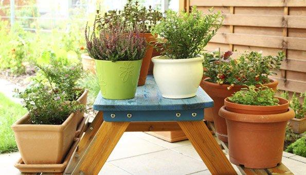Eine Kräutertreppe im Garten ist nicht nur platzsparend, sondern auch