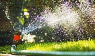 Für den grünen Daumen: Pflanzen im Garten richtig giessen
