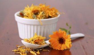 Ringelblumensalbe selber machen für die natürliche Hautpflege