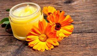 Pflege mit heilender Wirkung: So hilft Ringelblumensalbe