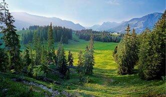Einmalige Natur erleben in den 10 schönsten Pärken der Schweiz