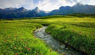 Unterwegs im Parc Ela: Den grössten Naturpark der Schweiz erleben