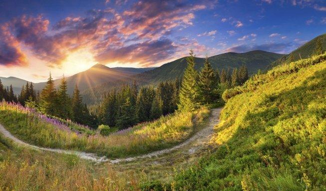 Pilgern als Auszeit in der Natur: Wandern auf dem Jakobsweg