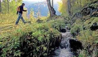 Das kühle Nass erleben: Wasserwege in der Schweiz