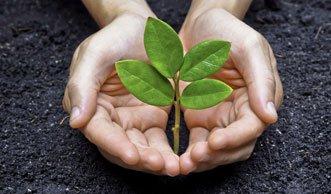 Nachhaltiges Handeln messen mit dem ökologischen Handabdruck