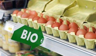 Wer mehr verdient, kauft eher Bio-Lebensmittel