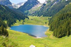 Artensteren in Schweizer Seen.