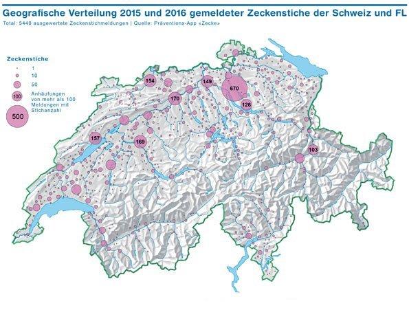 Zecken beissen vermehrt auch in städtischen Gebieten