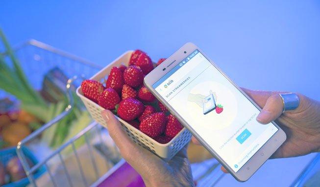 Neues Smartphone kann anzeigen, woraus Lebensmittel bestehen