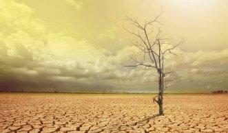 Eine halbe Million Tote durch Klimawandel bis 2050