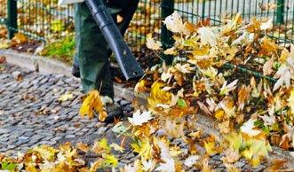 Umweltbelastung und Lärm: Graz verbietet als erste Stadt Laubbläser