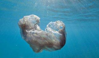 Schwimmender Abfallkübel saugt Plastikmüll aus dem Meer