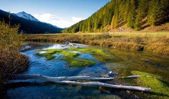 Münstertal will um Titel als UNESCO-Biosphäre kämpfen
