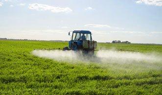 Pestizide schaden nicht nur der Umwelt, sondern auch dem Menschen