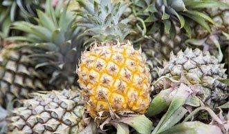 Wie aus einer Ananas eine Lederjacke wird