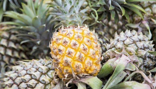 lederimitat aus ananas so wird die frucht zu taschen und jacken. Black Bedroom Furniture Sets. Home Design Ideas