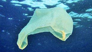 Plastik im Meer: Deutlich weniger Müll als bisher angenommen