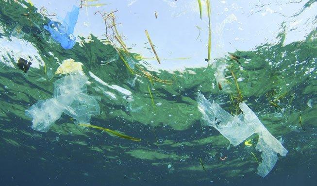 Plastik im Meer: Forscher untersuchen erstmals Müllinseln weltweit