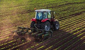 Moderne Landwirtschaft treibt Schweizer Bauern in den Suizid