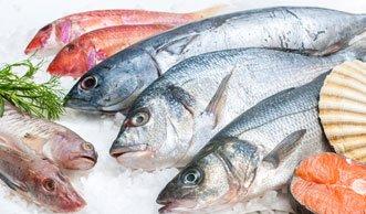 Grösste Detailhändler verzichten komplett auf bedrohte Fische