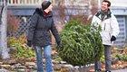 Wie entsorgt man den Weihnachtsbaum umweltschonend?