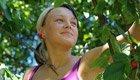 «Mundraub»: Kostenlos Obst von freien Bäumen pflücken
