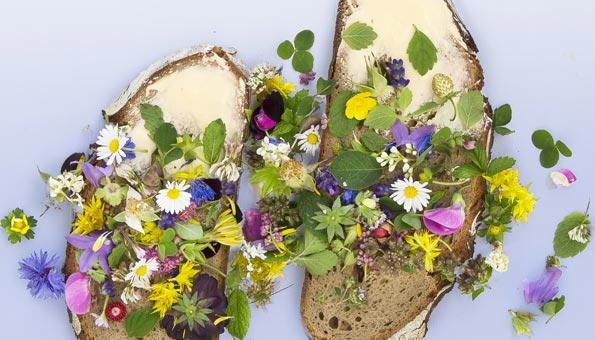 Wie Sie mit essbaren Blüten feine Gerichte aufpeppen