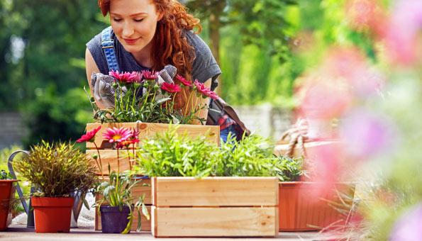 Artenvielfalt fördern: Einfache Tipps für Garten und Balkon