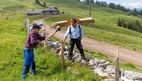 Bergbauern sichern die Zukunft der Schweizer Alpenwelt
