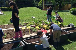 Wie Schulen in der ganzen Schweiz die Artenvielfalt fördern