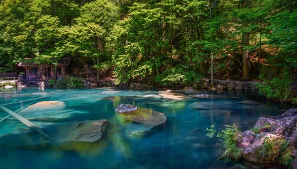 Blausee: Die schönsten Wanderungen und Tipps zur Region