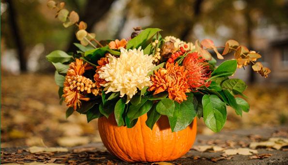 Kuerbisvase mit Blumen