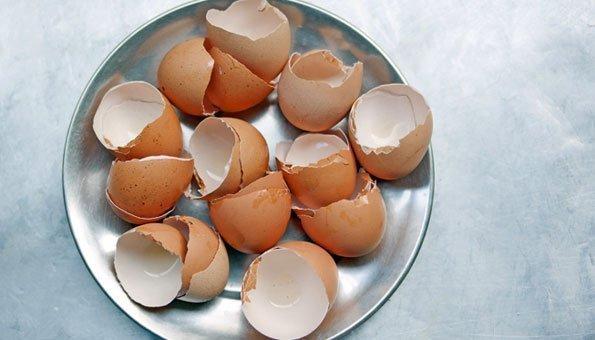 Eierschalen verwenden: 7 einfache Ideen für den Alltag