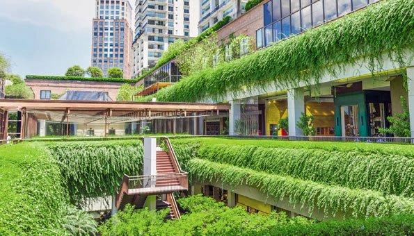 Nachhaltig Bauen nachhaltig bauen gebäude werden zu bäumen städte zu wäldern