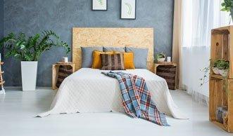 Gute Nacht: Die 6 besten Pflanzen für das Schlafzimmer