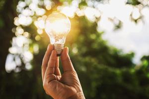 Glühbirne leuchtet als Symbol für erneuerbare Energie