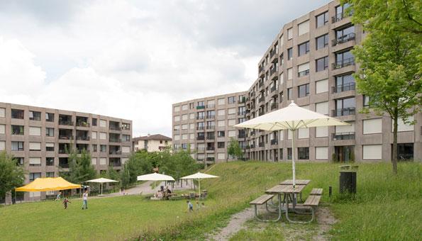 Wohnsiedlung Triemli in Albisrieden