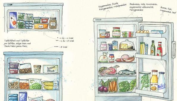 Lebensmittel richtig lagern und Food Waste vermeiden
