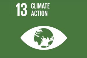 Ökonom Alessandro Bee über die Auswirkungen des Klimawandels auf Schweizer Unternehmen