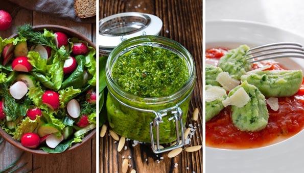 Barlauch Rezepte:  Von Bärlauch-Pesto über Bärlauch-Suppe bis Bärlauch-Butter