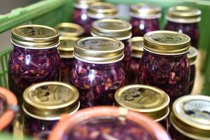 Verein Grassrooted will Eingelegtes Gemüse und Obst zweiter Klasse verkaufen