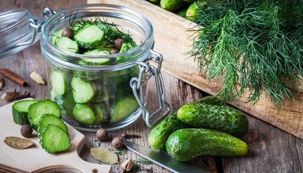Gurken Einmachen geht auch mit Salatgurken oder Einlegegurken und Kräutern