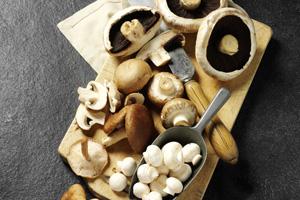 Pilze haltbar machen: trocknen, einfrieren oder einlegen