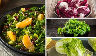 Knackige Wintersalate bringen frische Vielfalt in die kalten Tage
