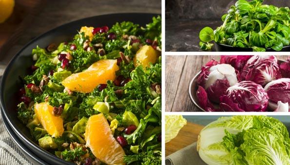 Wintersalat: Sorten und feine Rezepte