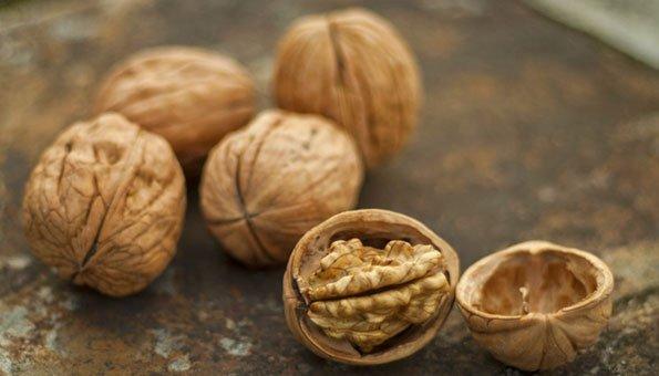 Baumnüsse: So gesund sind die kernigen Früchte
