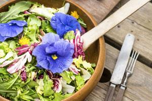 Essbare Blüten im Salat