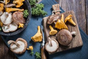 Fleischalternative: Verschiedene Gemüse- und Pilzsorten eignen sich gut als Fleischalternative