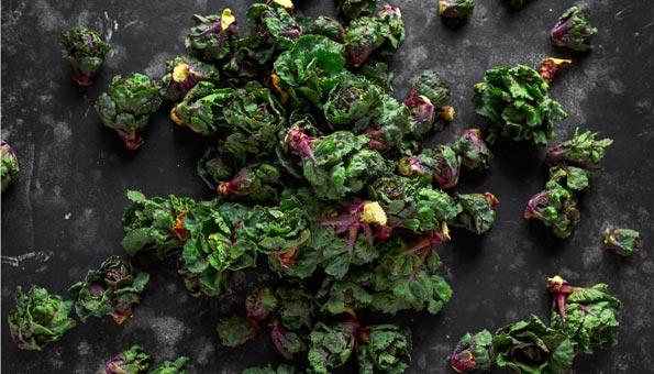 Flower Sprout: Facts und feine Rezepte zum Trendgemüse