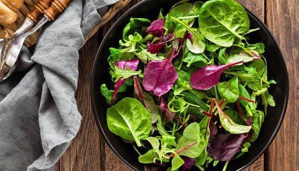 Am einfachsten lässt sich Krautstiel im knackigen Salat frisch verarbeiten.